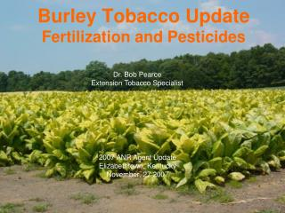 Burley Tobacco Update  Fertilization and Pesticides