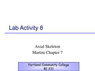 Lab Activity 8