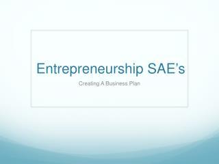 Entrepreneurship SAE's