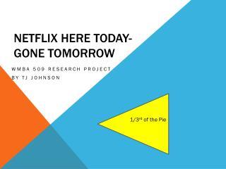 NETFLIX here today-       Gone Tomorrow