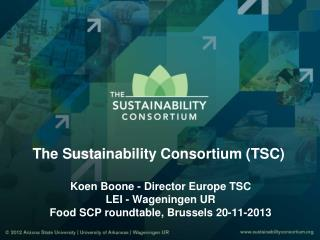 The Sustainability Consortium (TSC)  Koen Boone - Director Europe  TSC LEI -  Wageningen  UR Food SCP roundtable, Bruss