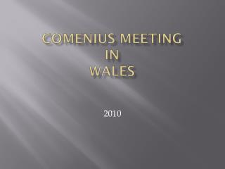 Comenius meeting in  Wales
