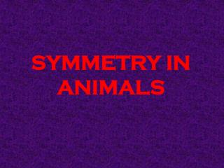SYMMETRY IN ANIMALS