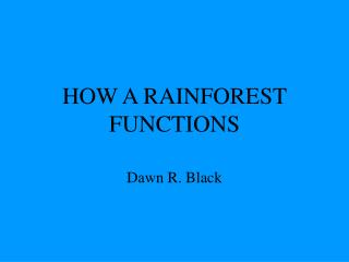 HOW A RAINFOREST FUNCTIONS