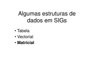Algumas estruturas de  dados em SIGs