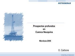 Prospectos profundos en Cuenca Neuquina