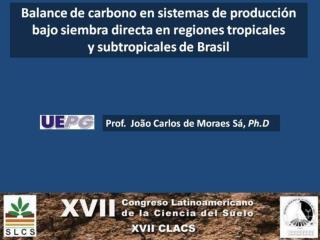 Balance de carbono en sistemas de producci%C3%B3n