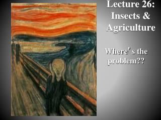 Lecture 26:  Insects & Agriculture