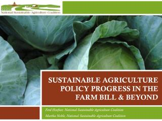 Sustainable Agriculture Policy  Progress in the Farm Bill & Beyond