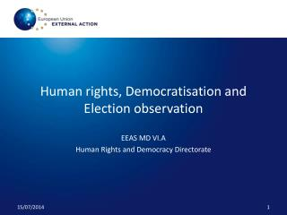 Human rights, Democratisation and Election observation