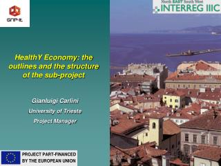 HealthY Economy: the outlines and the structure of the sub-project
