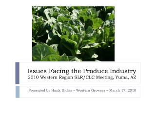Issues Facing the Produce Industry 2010 Western Region SLR/CLC Meeting, Yuma, AZ