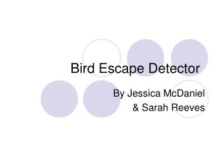 Bird Escape Detector
