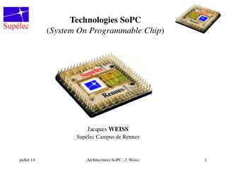 Technologies SoPC ( System On Programmable Chip )