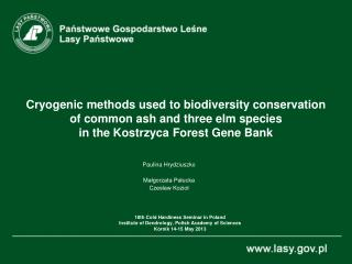 Cryogenic methods used to biodiversity conservation  of common ash and three elm species  in  t he Kostrzyca Forest Gen