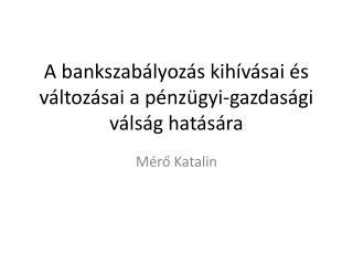 A bankszabályozás kihívásai és változásai a pénzügyi-gazdasági válság hatására