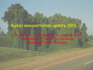 Kudzu demonstration update 2001