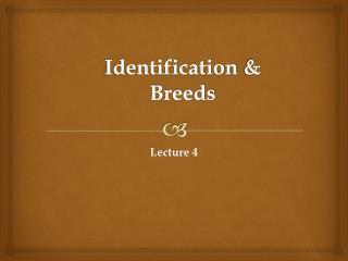 Identification &  Breeds