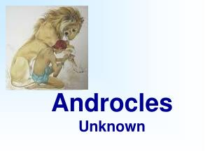 Androcles Unknown
