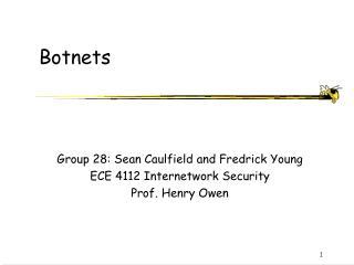 Botnets