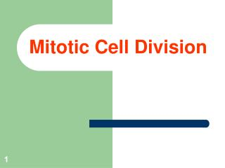 Mitotic Cell Division