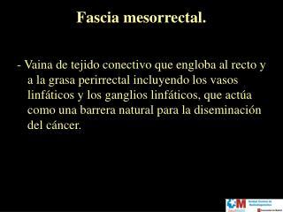 Fascia mesorrectal.