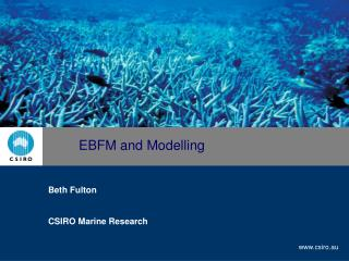 EBFM and Modelling