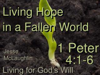 Living Hope  in a Fallen World