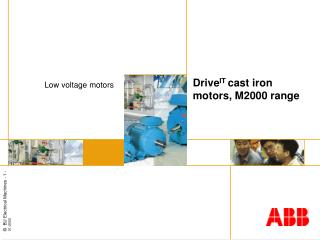 Drive IT  cast iron motors, M2000 range