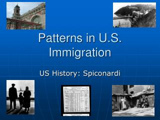 Patterns in U.S. Immigration