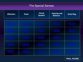 The Special Senses