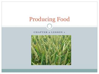 Producing Food