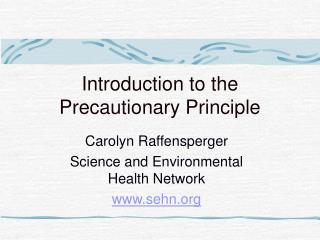 Introduction to the Precautionary Principle
