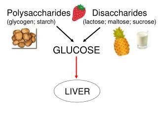 Polysaccharides (glycogen; starch)