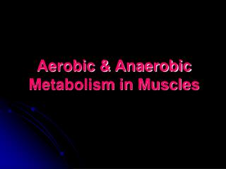 Aerobic & Anaerobic Metabolism in Muscles