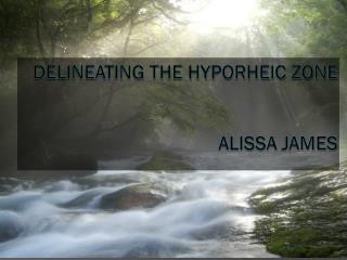 Delineating the Hyporheic Zone Alissa jameS