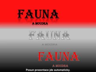 FAUNA A MOUDRA