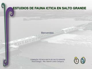 ESTUDIOS DE FAUNA ICTICA EN SALTO GRANDE