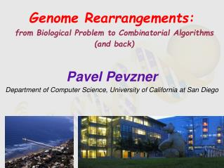Genome Rearrangements: from Biological  Problem to  Combinatorial Algorithms (and back)