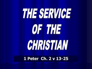 1 Peter  Ch. 2 v 13-25