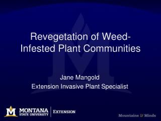 Revegetation of Weed-Infested Plant Communities
