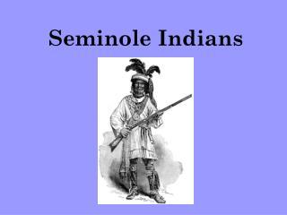 Seminole Indians