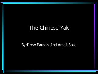 The Chinese Yak