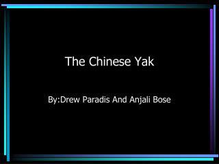 The Chinese Yak