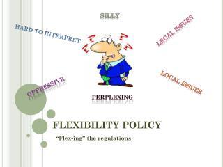 FLEXIBILITY POLICY