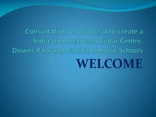 Consultation on proposal to create a federation between Cedar Centre, Downs Park and Patcham House Schools