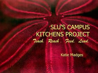 SLU'S CAMPUS KITCHENS PROJECT Teach.  Reach .  Feed.  Lead.