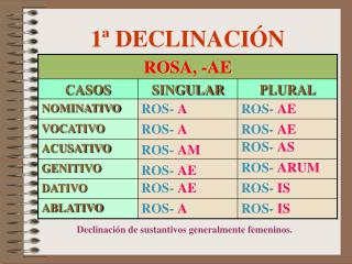 1  DECLINACI N