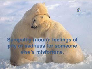 Sympathy (noun): feelings of pity or sadness for someone else's misfortune.