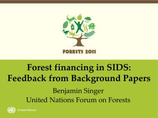 Forest financing in SIDS: Feedback from Background Papers